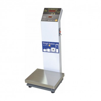 Electronic Scale with Coin