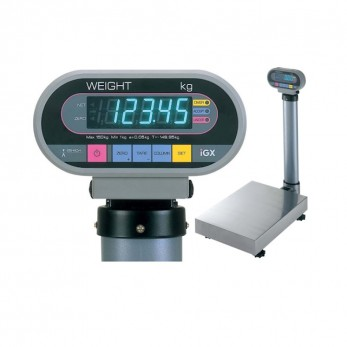 IGB Digital platform scale